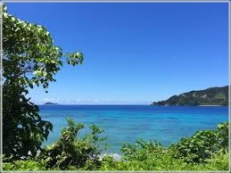 加計呂麻島 移住 最適