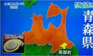 南部太ねぎ 青森県 名産 大きさ 画像