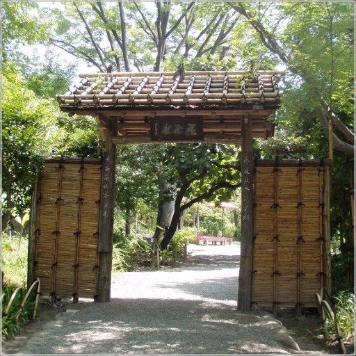 向島百花園 萩のトンネル 開花状況